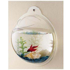 Fish Bubbles – Wall Hanging Fish Tank