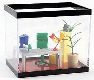Office Fish Tank – Make your Fish Feel Like a Boss