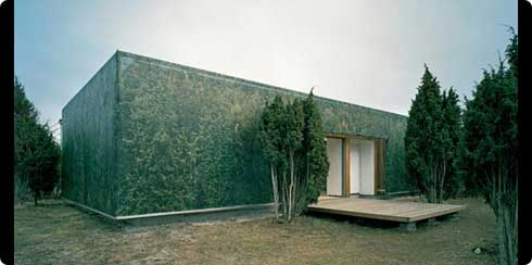 The Camouflage House