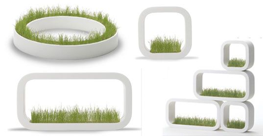 Metaphys Indoor Grass Planters