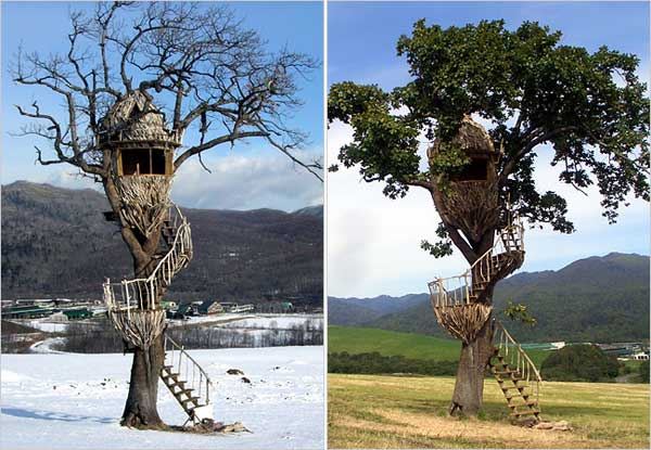 tree houses Top 8 Most Amazing Tree Houses