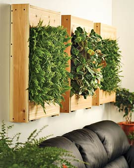 Indoor Living Wall Planter