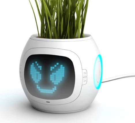 Pet Plant Pot Wants to Make us Understand How Plants Feel