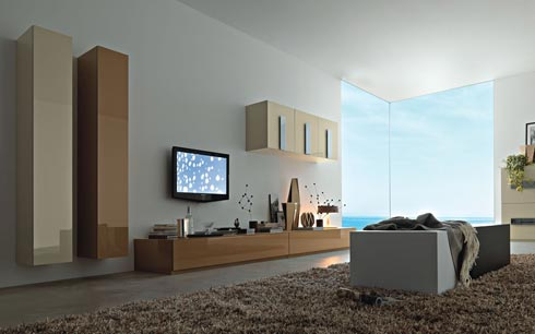Wall Units and Wall Mounted Shelves Inspirational Pictures