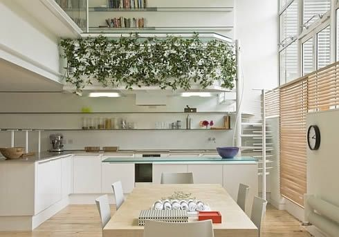 corsica street apartment by paxton locher architects 4 Corsica Street Apartment, For Rent in London