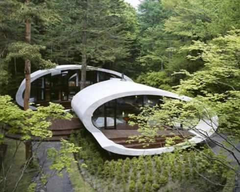 Shell House in the Japanese Forests