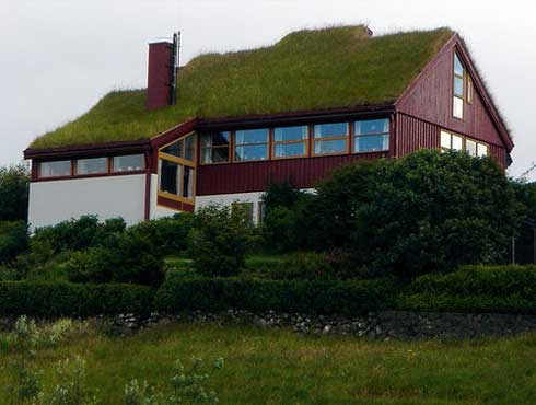 What are the Benefits of a Green Roof for Your Home