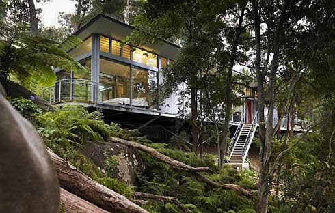 luxury-tree-house