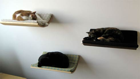 cat curve wall bed Curve wall mounted bed for your cat