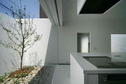 t house by den nen architecture 3 T House by Den Nen Architecture