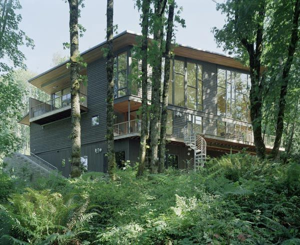 kitchel house 8 Beautiful House Surrounded by Forest and Lush Landscape