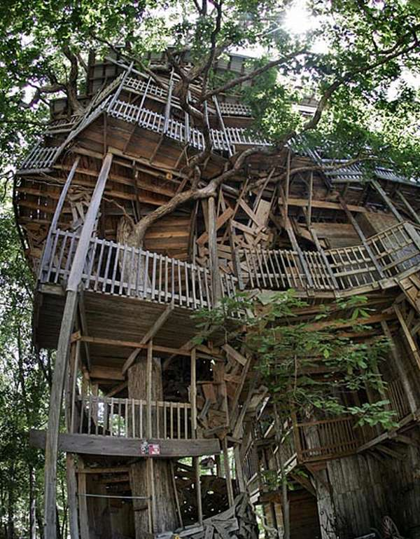 giant tree house1 Worlds Largest Tree House