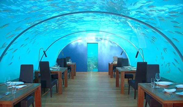 interior design undersea restaurant