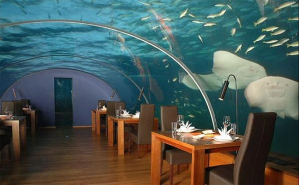 under sea crazy restaurant3 World's First Ever Undersea Restaurant   Ithaa