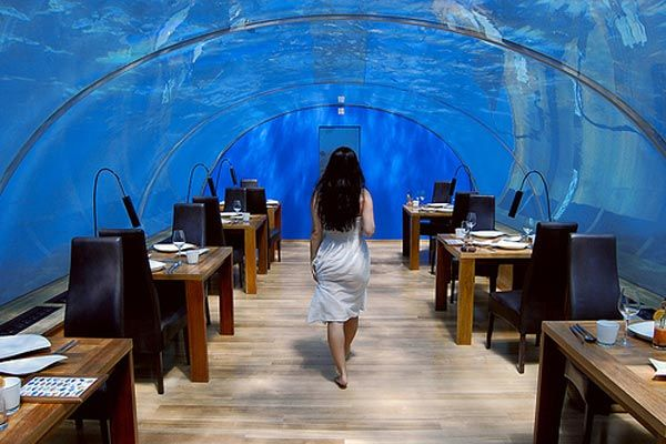 under sea crazy restaurant  World's First Ever Undersea Restaurant   Ithaa