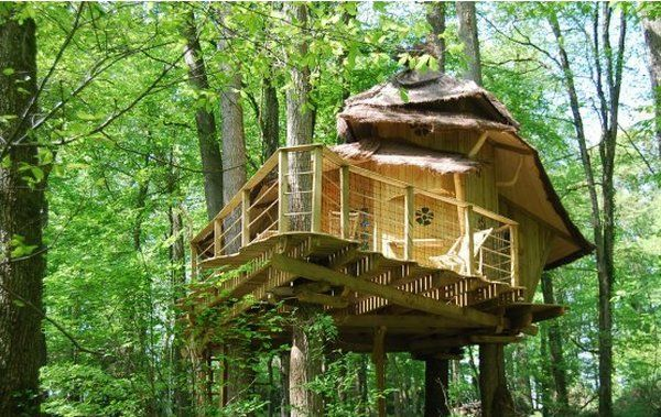 Tree Cottages- A Different Kind of Accommodation
