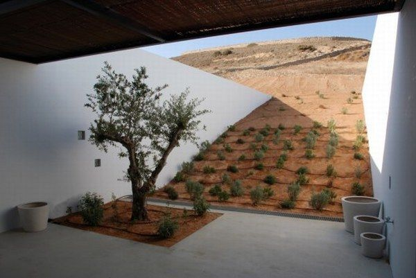 1262878891 aloni south courtyard 528x353 Amazing Camouflaged Stone   House in Greece