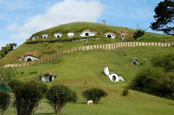 sheep vilage Cute Lord of the Rings Hobbit Houses in New Zealand