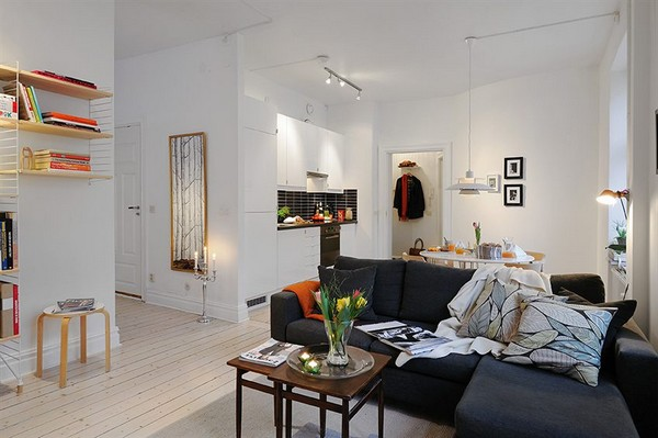 Well Planned Small Apartment with a Fresh Interior Design