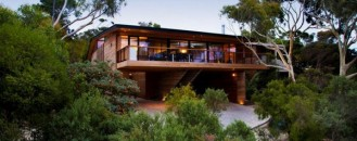 Contemporary Adult's Tree House: Citriodora Residence in Australia