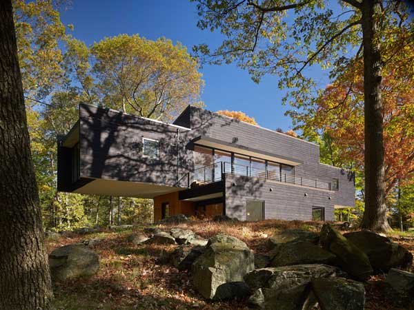 Cantilevering Single Family Residence Built Between Tall Trees