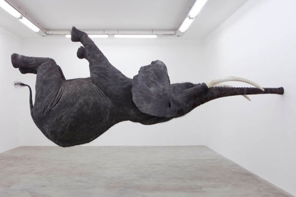 Levitating Elephant Installation Balancing On Its Trunk