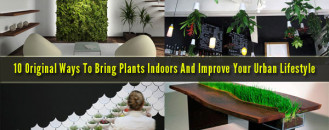 10 Original Ways To Bring Plants Indoors And Improve Your Urban Lifestyle