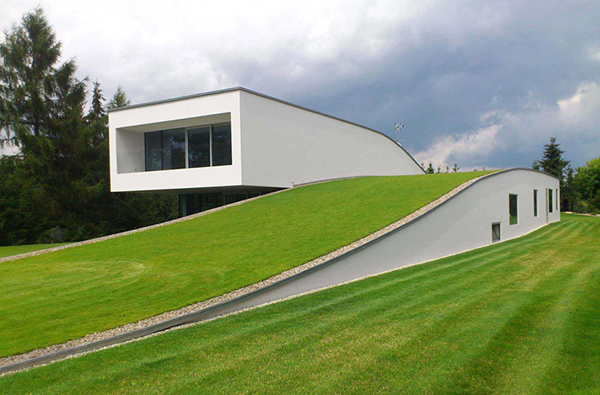 A Fluid Living Space Wrapped in Grass: The Auto-Family House