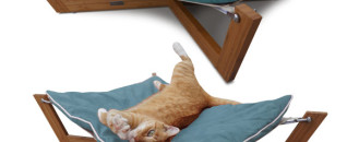 Comfortable Furniture for Pampered Pets by Pet Lounge Studios