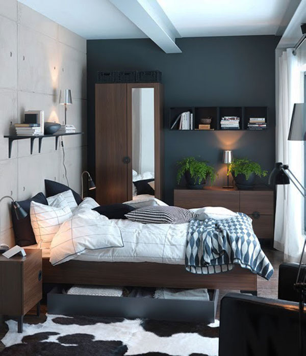 Small Bedroom Ideas For Men