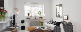 Gothenburg's Exquisite Side: Small Apartment Tastefully Designed