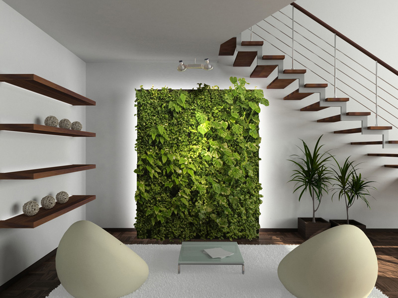 Living Walls How They Can Improve Your Home And Health