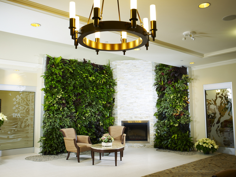 Collect This Idea Fh Living Walls1