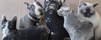 Custom Pillows Cloning Your Favorite Pets by Shannon Broder