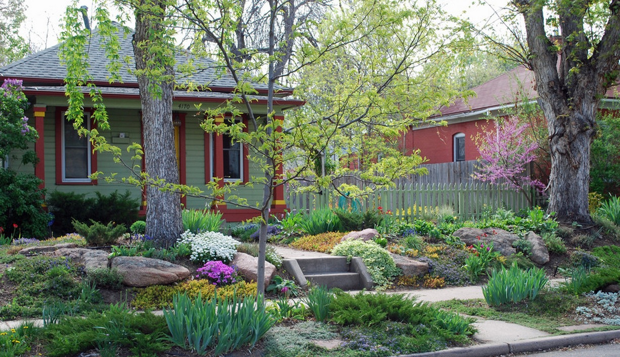 exterior ideas home without lawn flowers