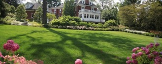 10 Essential Lawn Care Tips for Your Late Summer Home