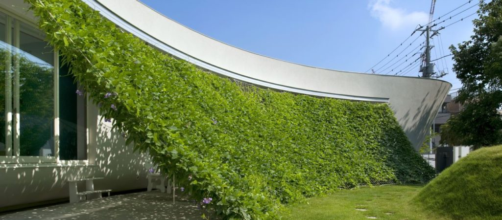 Lovely Green Wall Integrated in The Design of a Japanese Modern Crib
