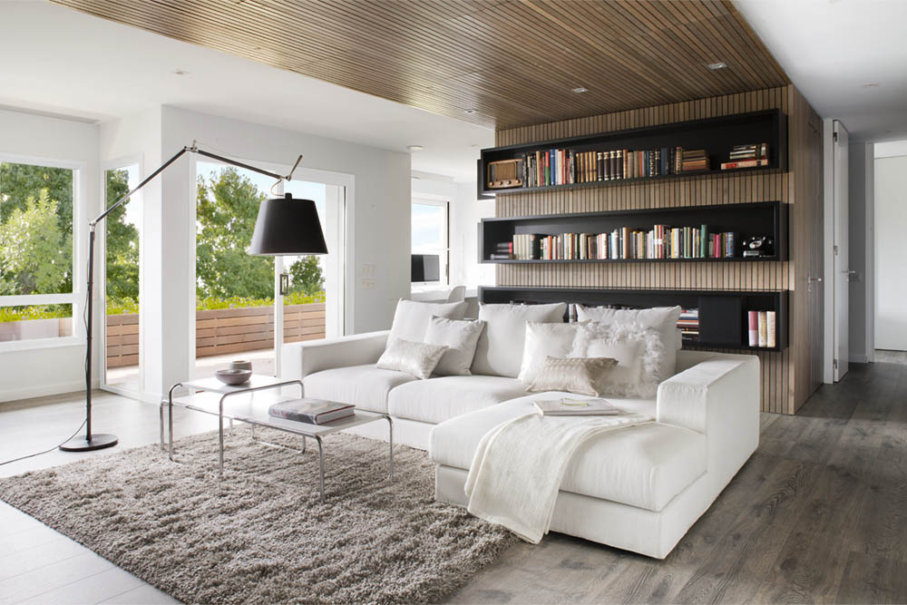 Collect This Idea Apartment Contemporary Design