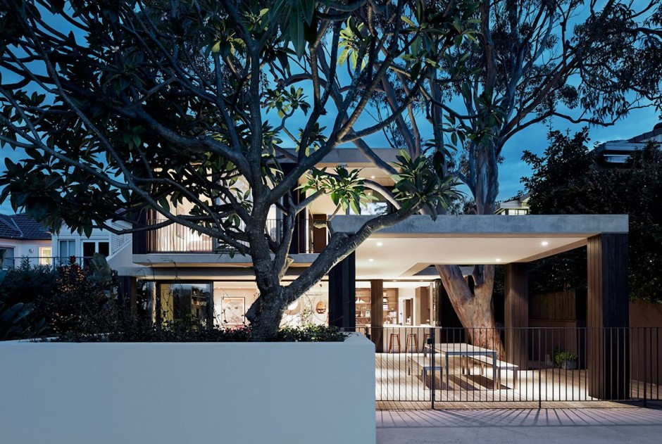 Modern Home Extension in Sydney Creatively Preserving an Existing Tree