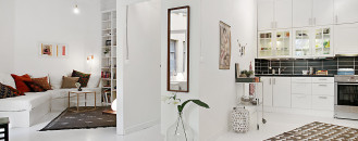 Scandinavian One-Room Apartment Exuding Great Taste and Peaceful Living