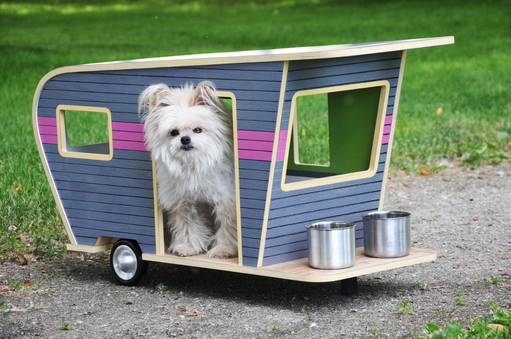 design dog trailer ideas