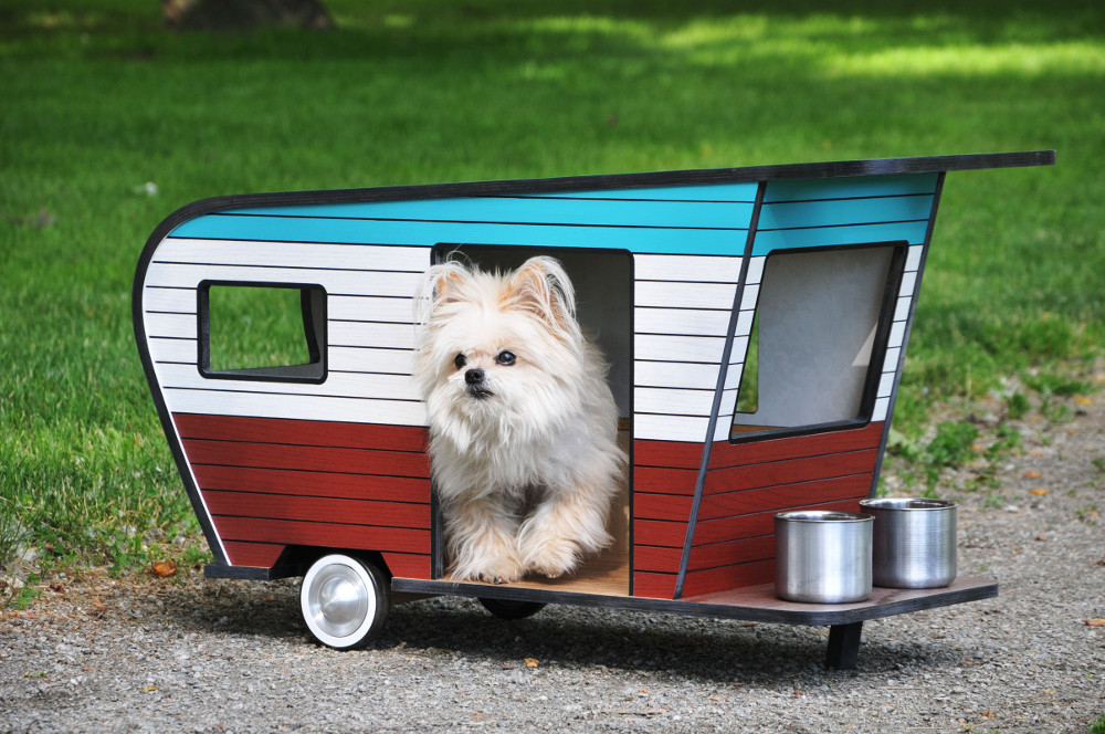 dog trailer ideas (4)