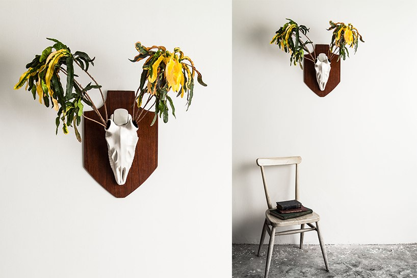 O Deer Collect this idea ideas unusual decorating item