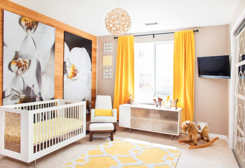 Baby Nursery Design Ideas And