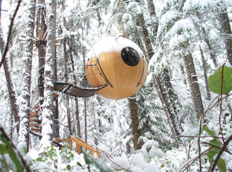 sphere tree house