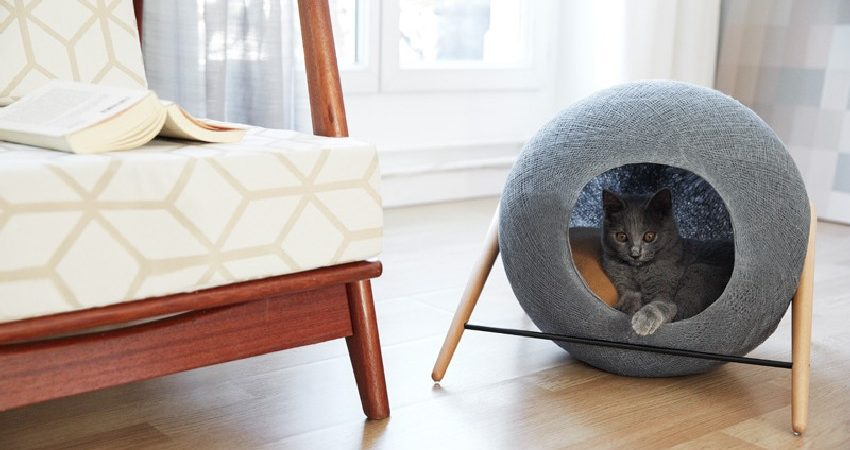 Stylish Cat Beds and Cocoons for the Discerning Pet