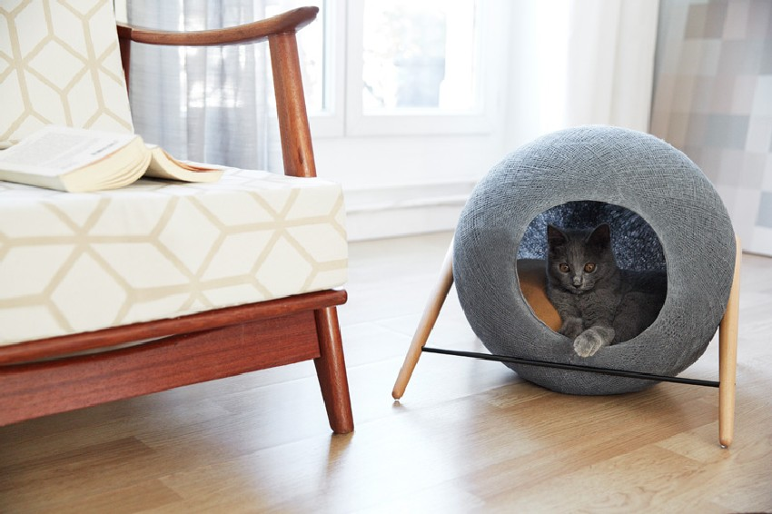 Modern Cat Bed Furniture