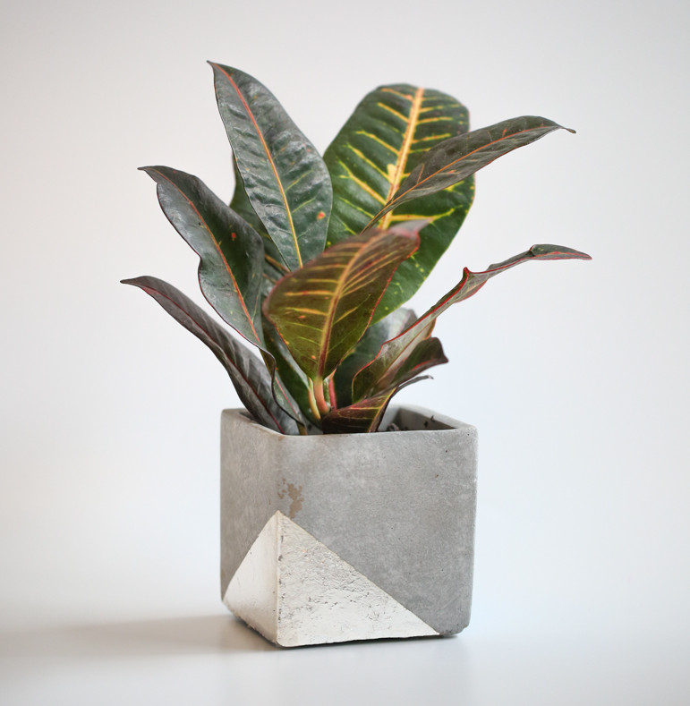 Modern planter - For the Makers - Freshome