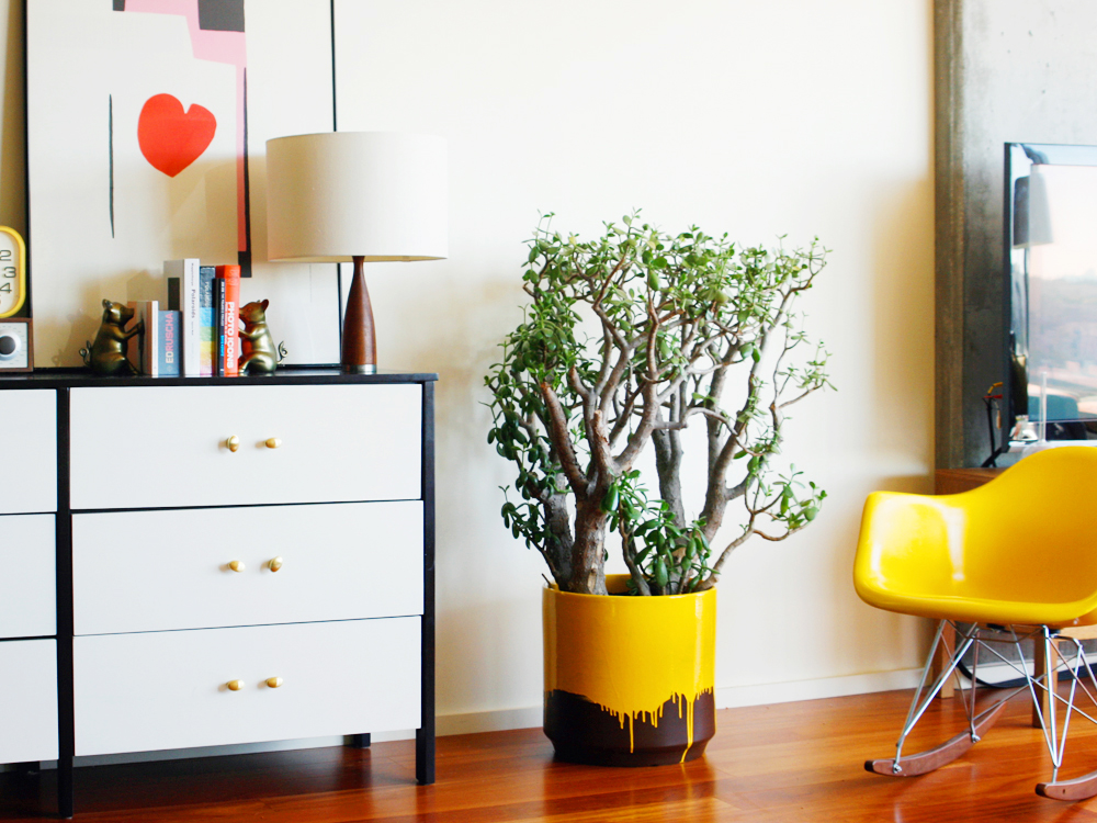 6 Modern Planters You Can Diy This