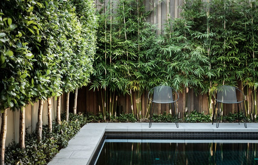 7 Ways To Make Your Yard More Private Freshome Com